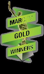 2019 gold winner_trans2